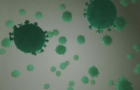 Virus har olika sätt att invadera levande organismer