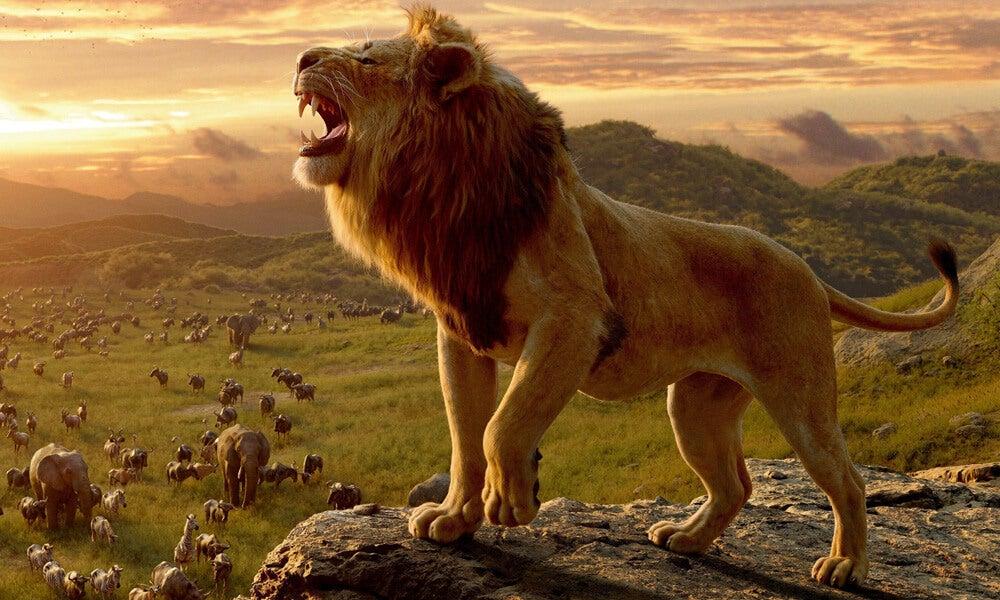 År 2019 gjordes en nyinspelning av filmen Lejonkungen