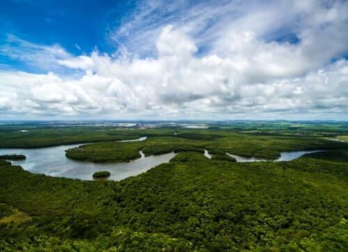 Ett fotografi av Amazonasfloden