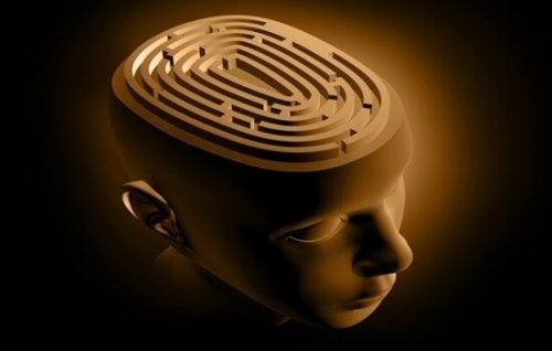 En bild av hjärnan som labyrint.
