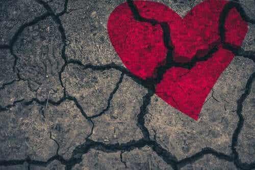 Takotsubokardiomyopati - ett brustet hjärta