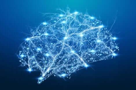 En upplyst hjärna som representerar neuronsynkronisering.