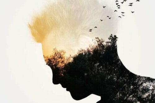 En mänsklig siluett med skogsbakgrund
