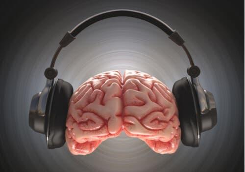 En hjärna med hörlurar
