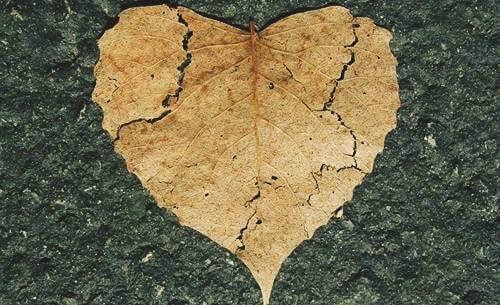 Emotionellt självskadebeteende - vad är det och hur förebygger man det?