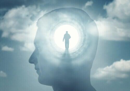 Medvetandets psykopatologi som koncept