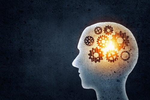 Vad tjänar vi på att träna minnet?