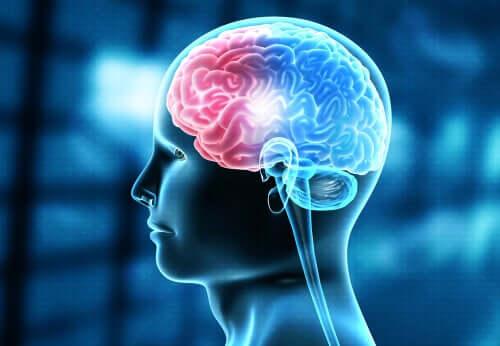 Gerstmanns syndrom är en ovanlig neurologisk sjukdom
