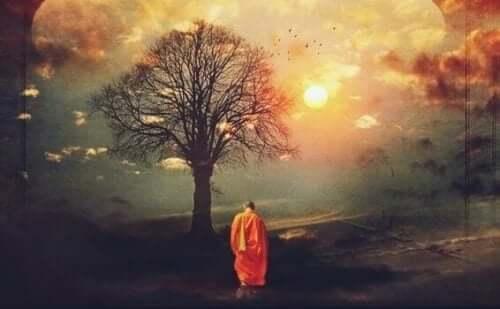 Djup och bakgrund: Buddhistmunk framför träd