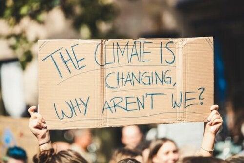 Klimatrörelsens heliga värderingar försvaras genom moralisk upprördhet, skambeläggning, botgöring och rening