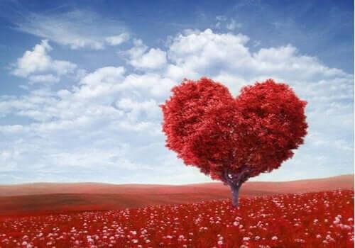 Alla hjärtans dag: Vem var egentligen Sankt Valentin?