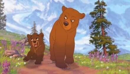 Två björnbröder som visar oss personlig utveckling