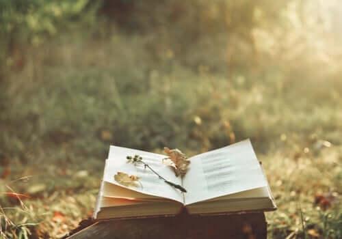 Hur poesi kan lindra smärta och förbättra livet