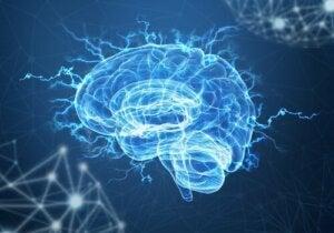 Neuroplasticitet och posttraumatisk stress: Kan hjärnan reparera trauman?