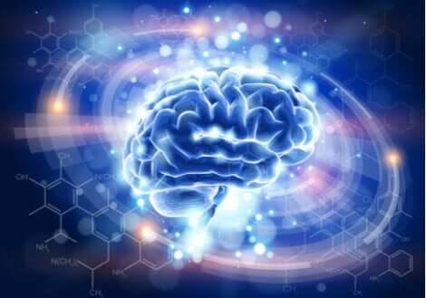 Erfarenheter kan få hjärnan att återgå till sitt normala tillstånd