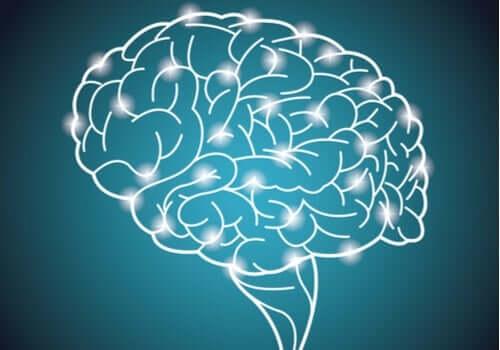 Världens största experiment om intelligens