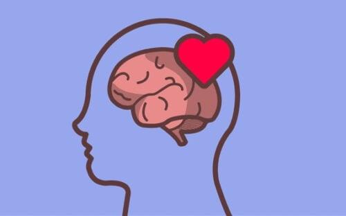 En hjärna och ett hjärta som representerar känsloreglering