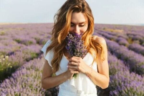 Vad är doftminnet och hur fungerar det?