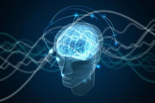 En hjärna som representerar mänskligt medvetande