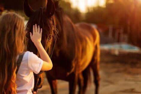 En person som försöker komma över rädslan för hästar