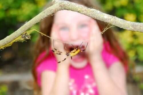 Ett barn rädd för en spindel