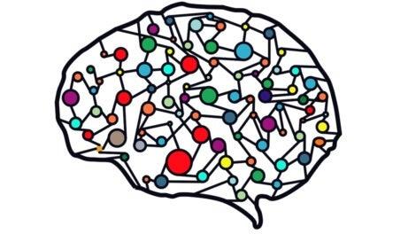 En hjärna med färger