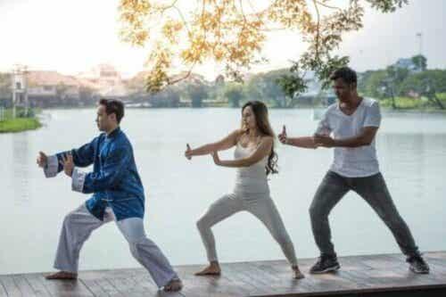 Att träna qigong – egenskaper och utövning