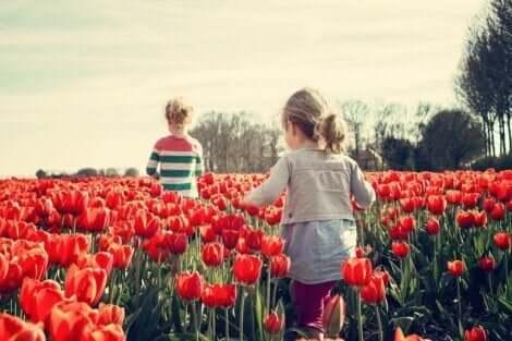 Två barn går genom ett tulpanfält och lär sig socioemotionella färdigheter