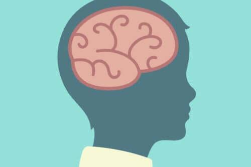 barnhjärna