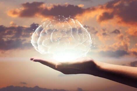 Någon som håller en hjärna i handen