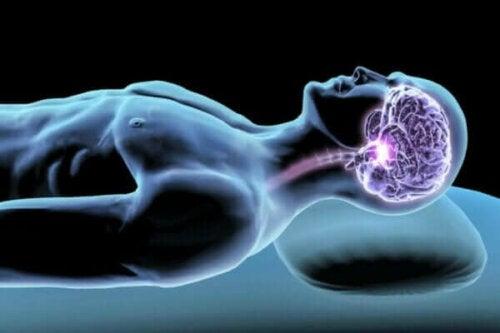 Våra sömnhormoner: kroppsämnen för en god natts sömn
