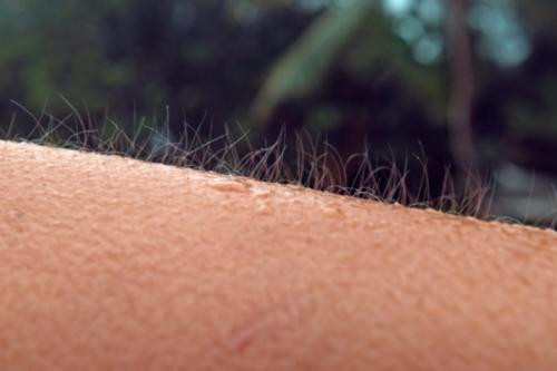 Hudorgasmer, när musik ger dig gåshud