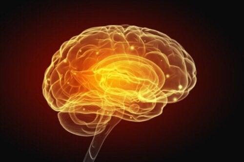 Artificiell intelligens tillåter oss snart att skriva med våra tankar